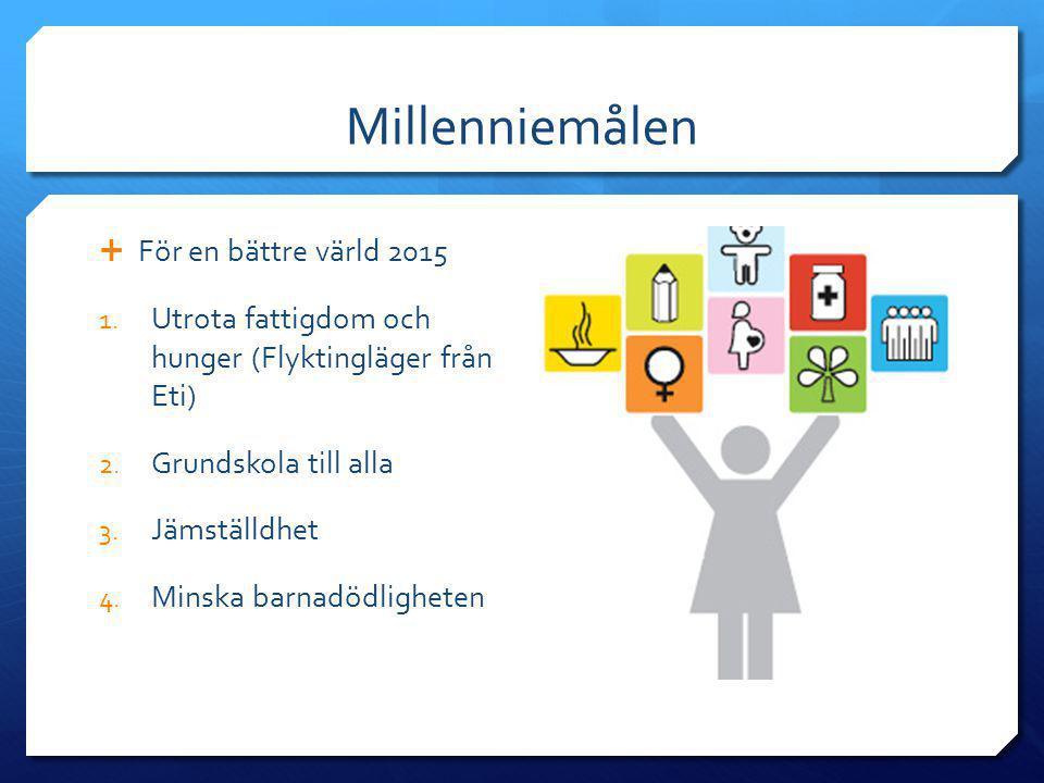 Millenniemålen För en bättre värld 2015