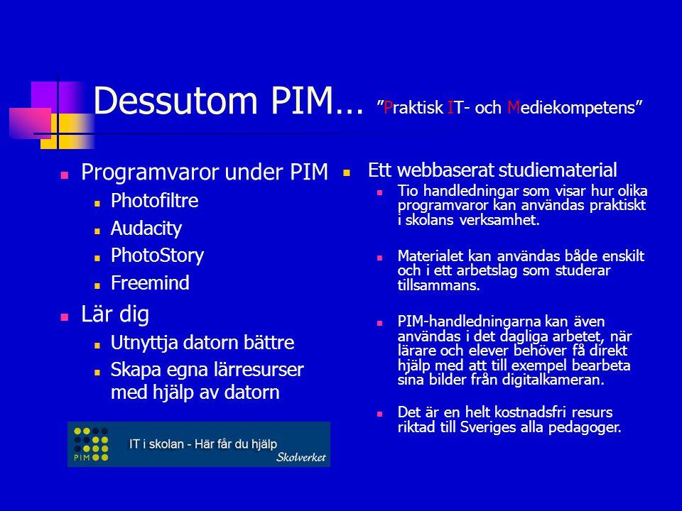 Dessutom PIM… Praktisk IT- och Mediekompetens