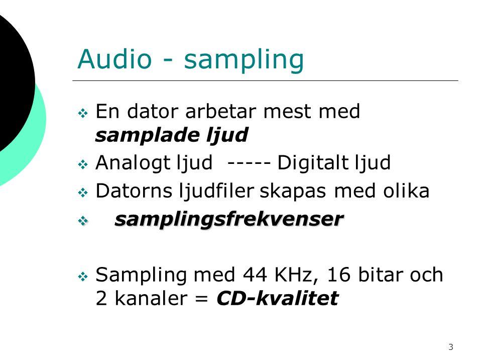 Audio - sampling En dator arbetar mest med samplade ljud