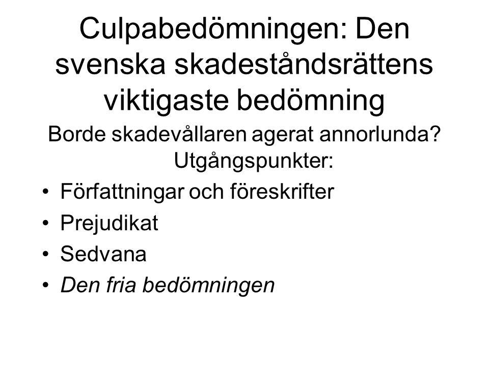 Culpabedömningen: Den svenska skadeståndsrättens viktigaste bedömning