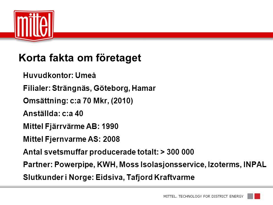 Korta fakta om företaget