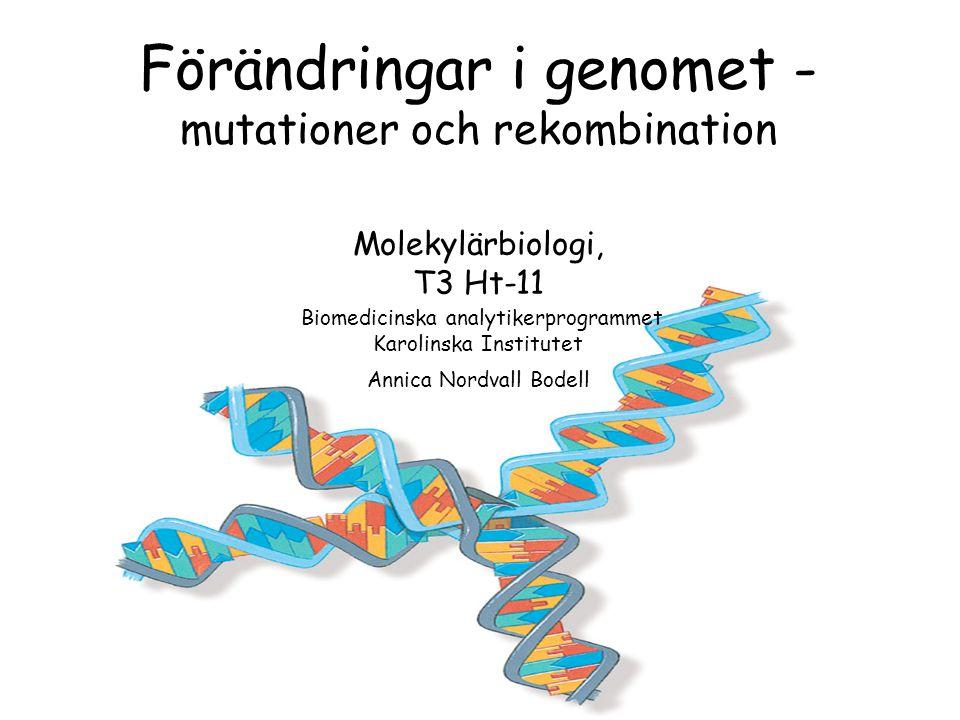 Förändringar i genomet - mutationer och rekombination Molekylärbiologi, T3 Ht-11 Biomedicinska analytikerprogrammet Karolinska Institutet Annica Nordvall Bodell