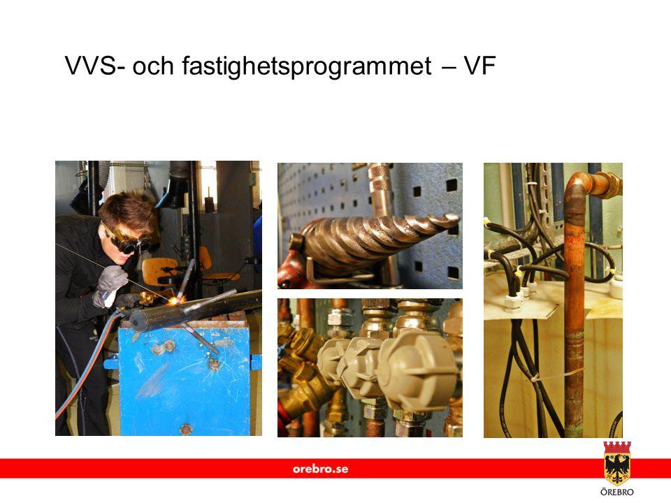 VVS- och fastighetsprogrammet – VF