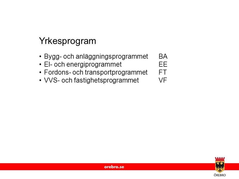 Yrkesprogram Bygg- och anläggningsprogrammet BA