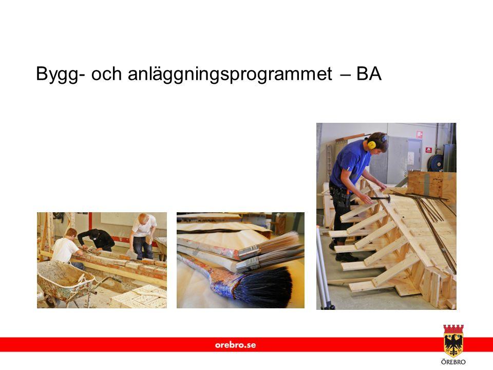 Bygg- och anläggningsprogrammet – BA