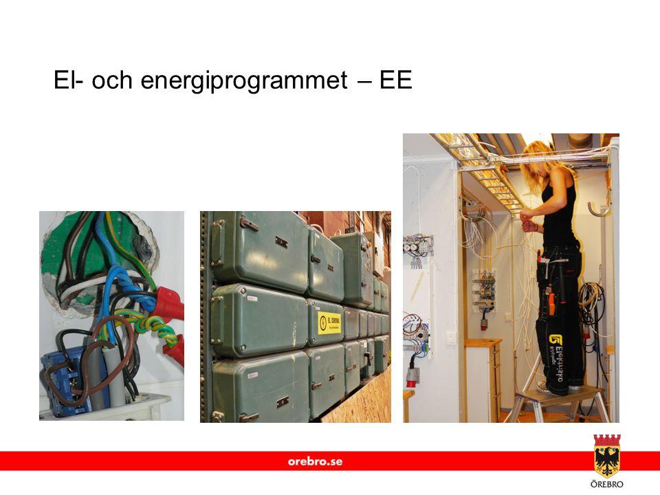 El- och energiprogrammet – EE