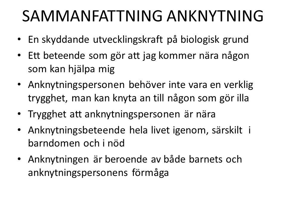 SAMMANFATTNING ANKNYTNING