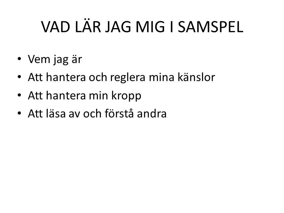 VAD LÄR JAG MIG I SAMSPEL