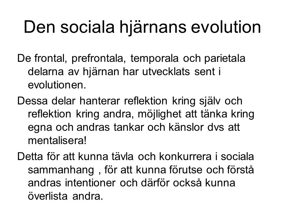 Den sociala hjärnans evolution