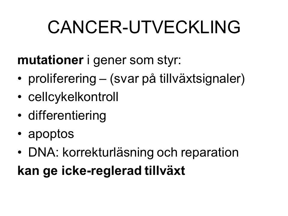 CANCER-UTVECKLING mutationer i gener som styr: