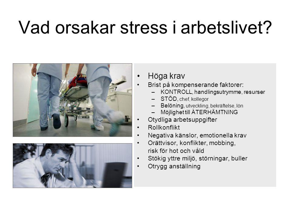 Vad orsakar stress i arbetslivet