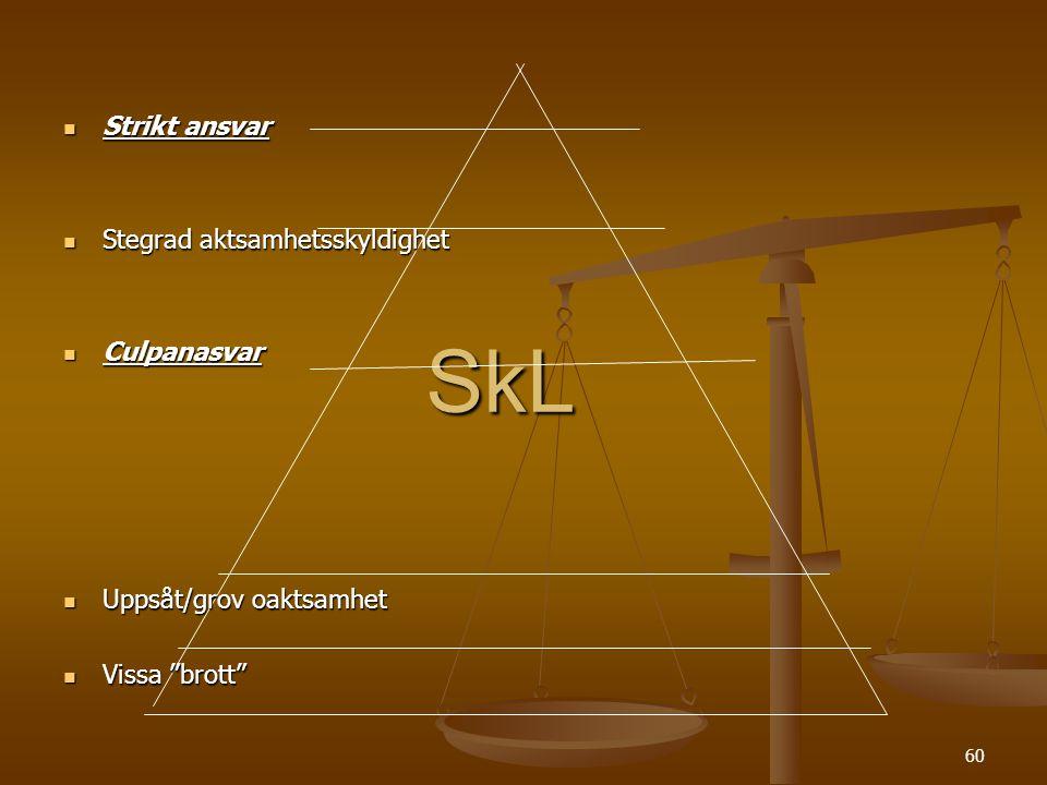 SkL Strikt ansvar Stegrad aktsamhetsskyldighet Culpanasvar