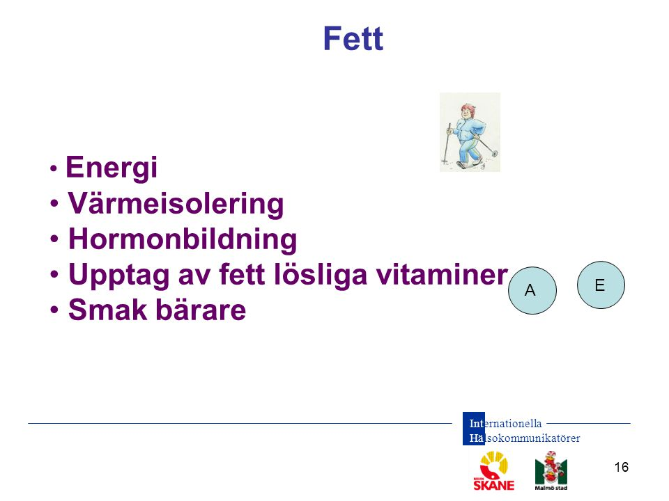 Fett Värmeisolering Hormonbildning Upptag av fett lösliga vitaminer