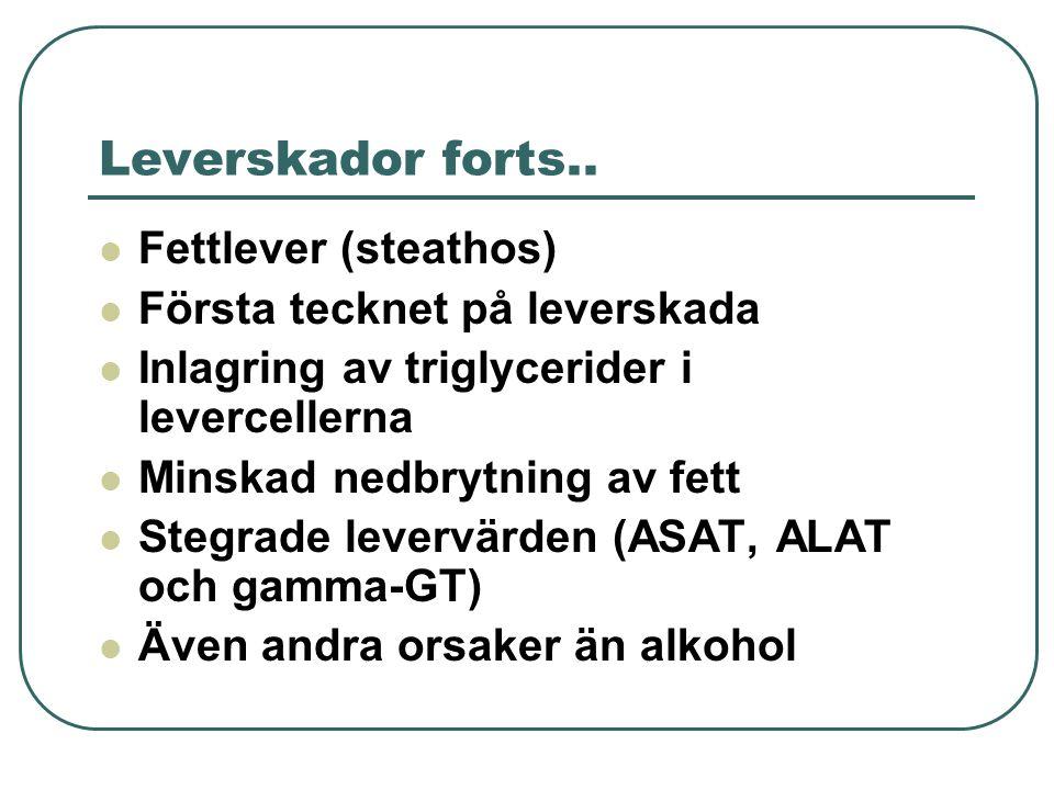 Leverskador forts.. Fettlever (steathos) Första tecknet på leverskada