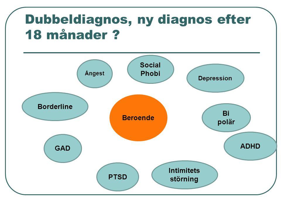 Dubbeldiagnos, ny diagnos efter 18 månader