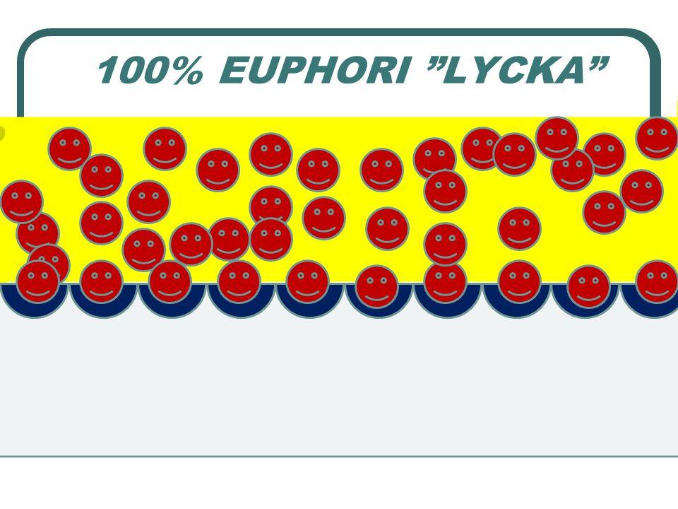 100% EUPHORI LYCKA