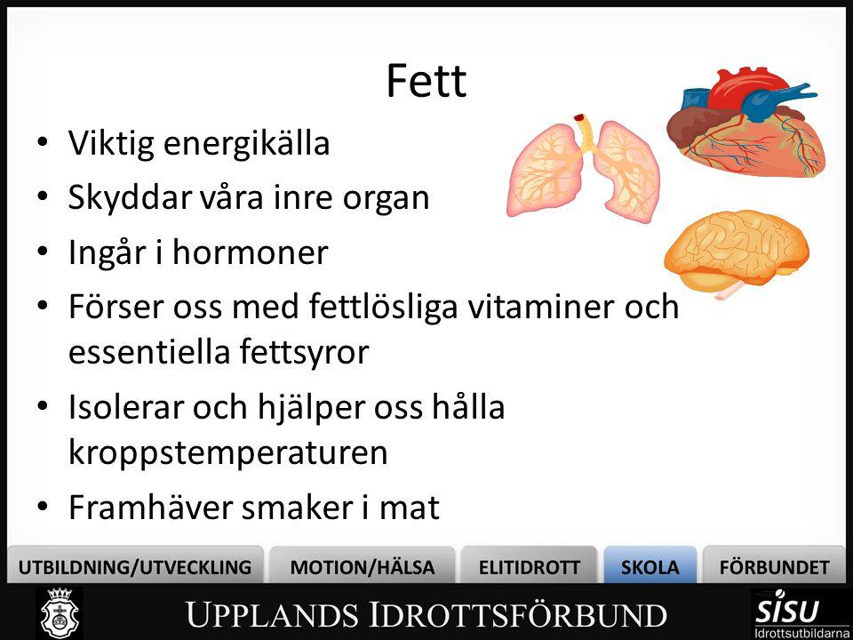 Fett Viktig energikälla Skyddar våra inre organ Ingår i hormoner