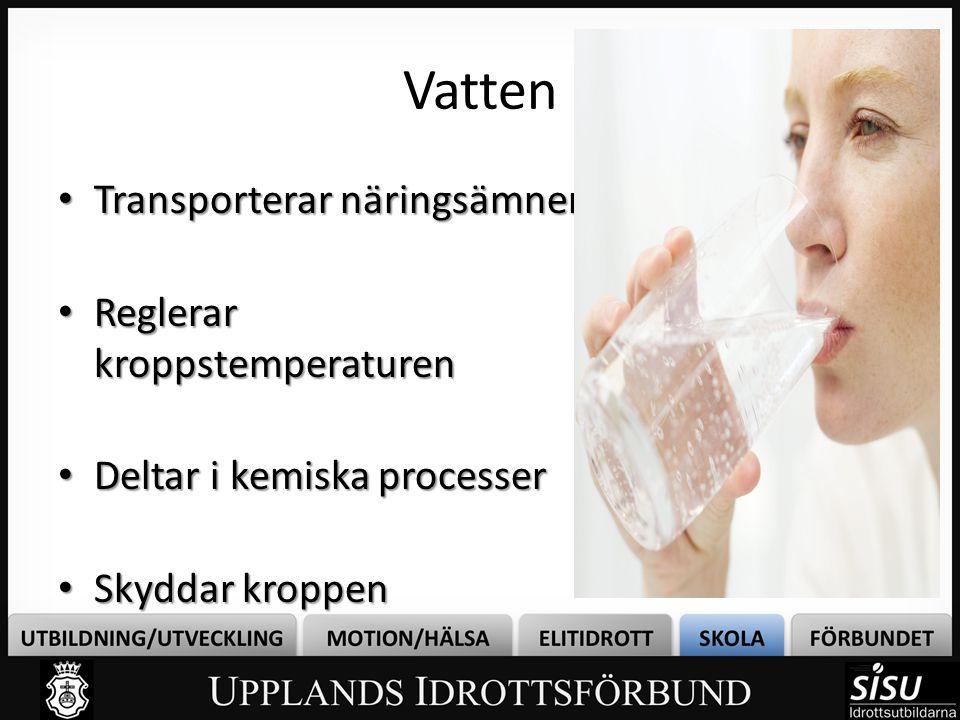 Vatten Transporterar näringsämnen Reglerar kroppstemperaturen