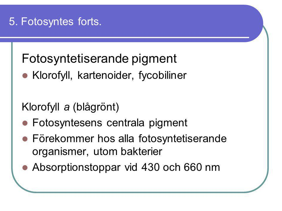 Fotosyntetiserande pigment