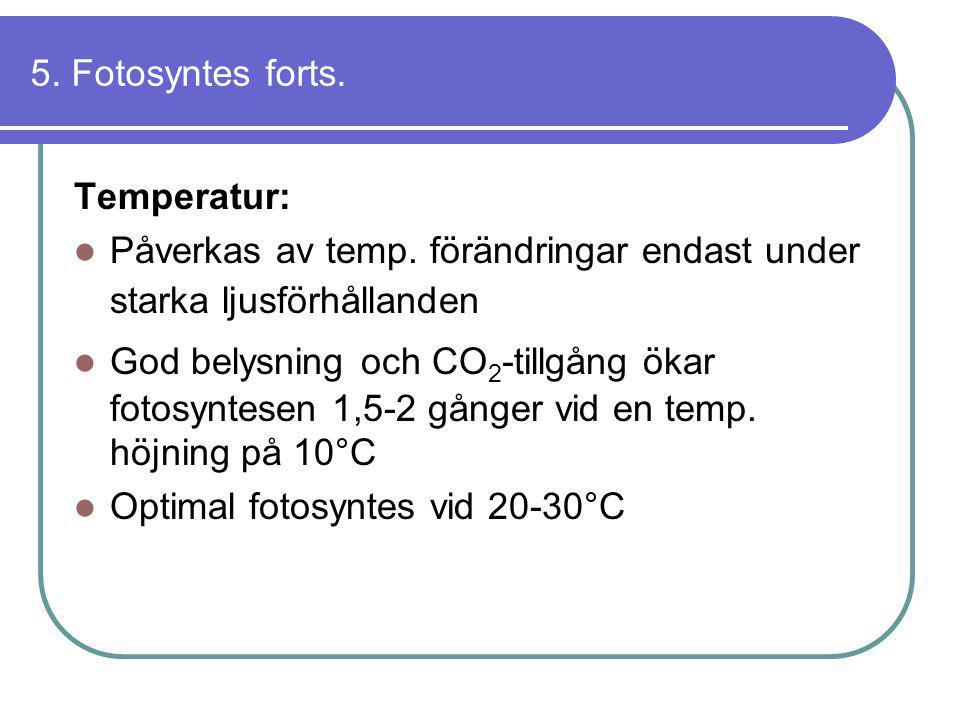 5. Fotosyntes forts. Temperatur: Påverkas av temp. förändringar endast under starka ljusförhållanden.