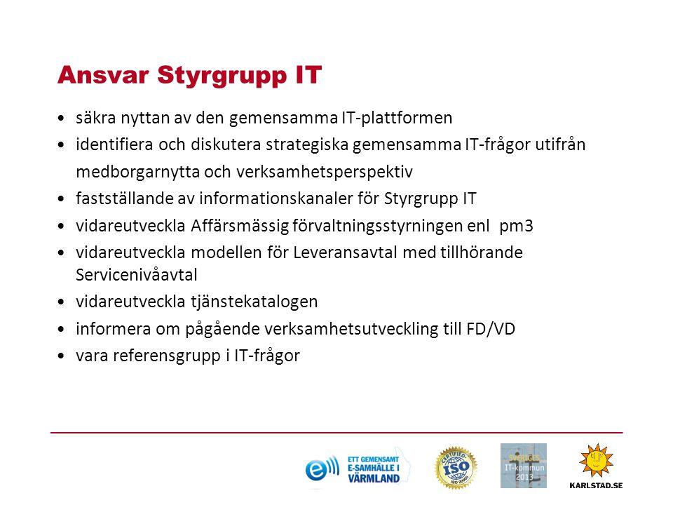Ansvar Styrgrupp IT säkra nyttan av den gemensamma IT-plattformen