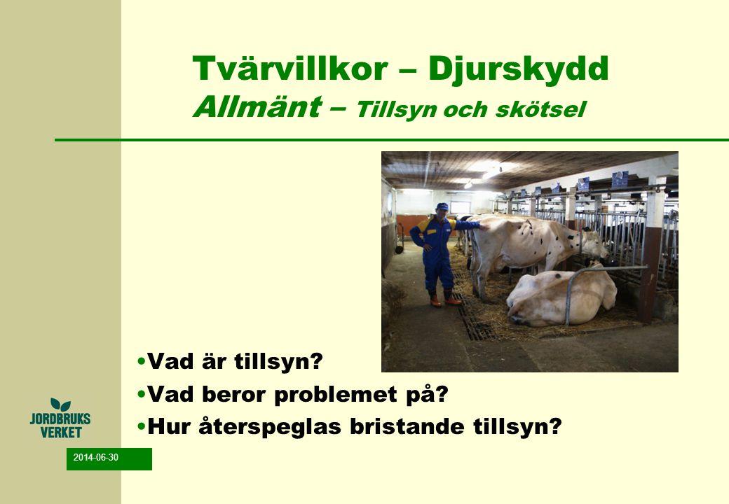 Tvärvillkor – Djurskydd Allmänt – Tillsyn och skötsel