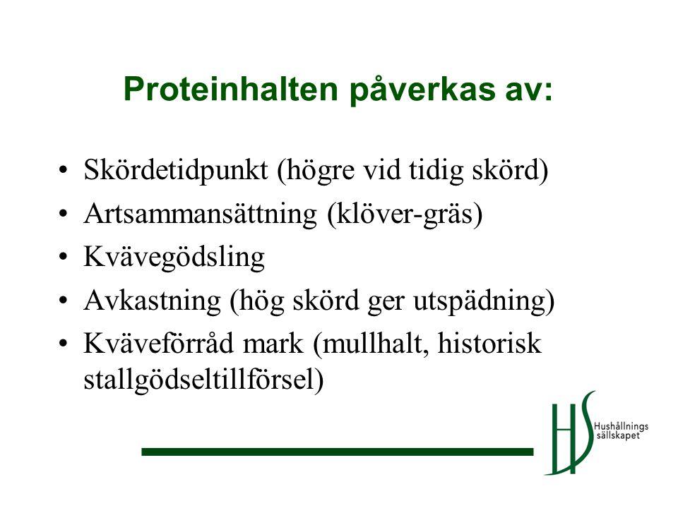 Proteinhalten påverkas av: