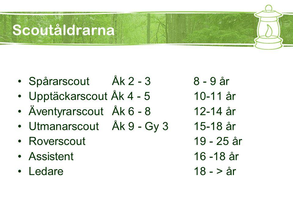 Scoutåldrarna Spårarscout Åk 2 - 3 8 - 9 år