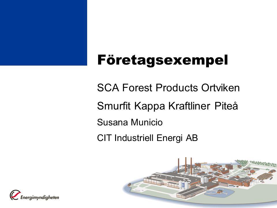 Företagsexempel SCA Forest Products Ortviken