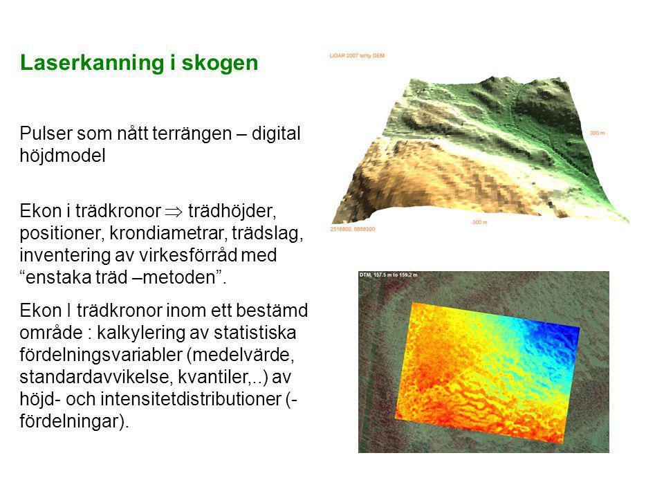 Laserkanning i skogen Pulser som nått terrängen – digital höjdmodel