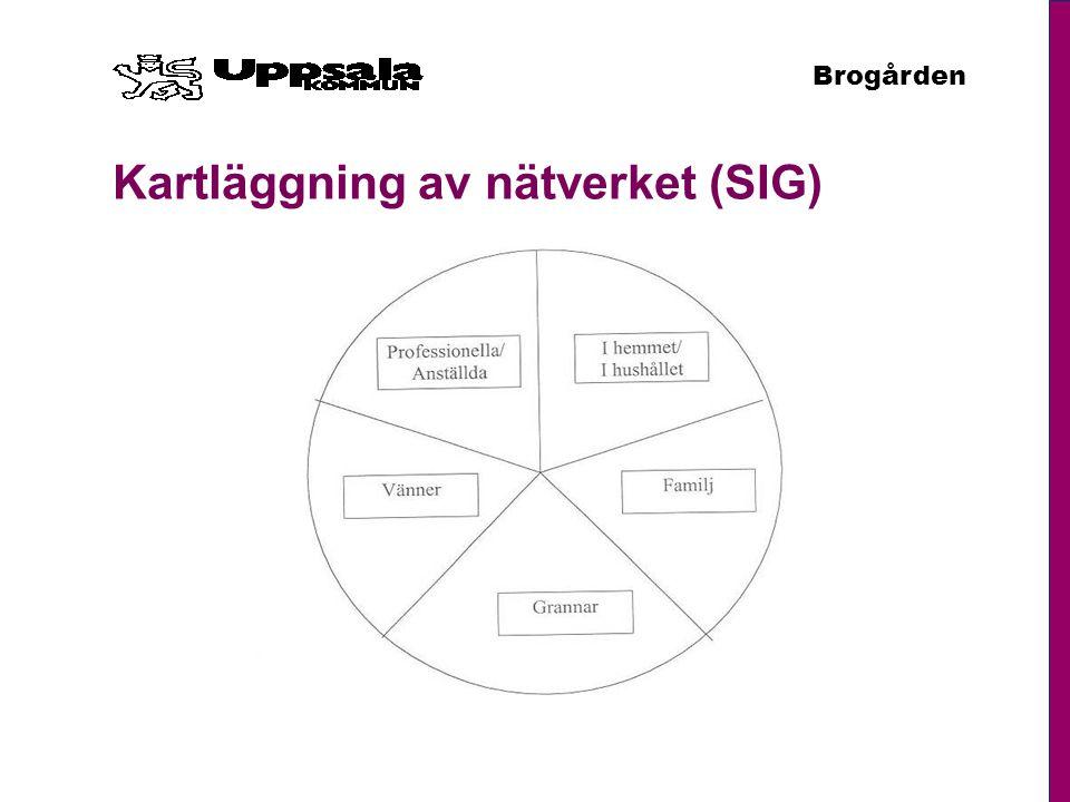 Kartläggning av nätverket (SIG)