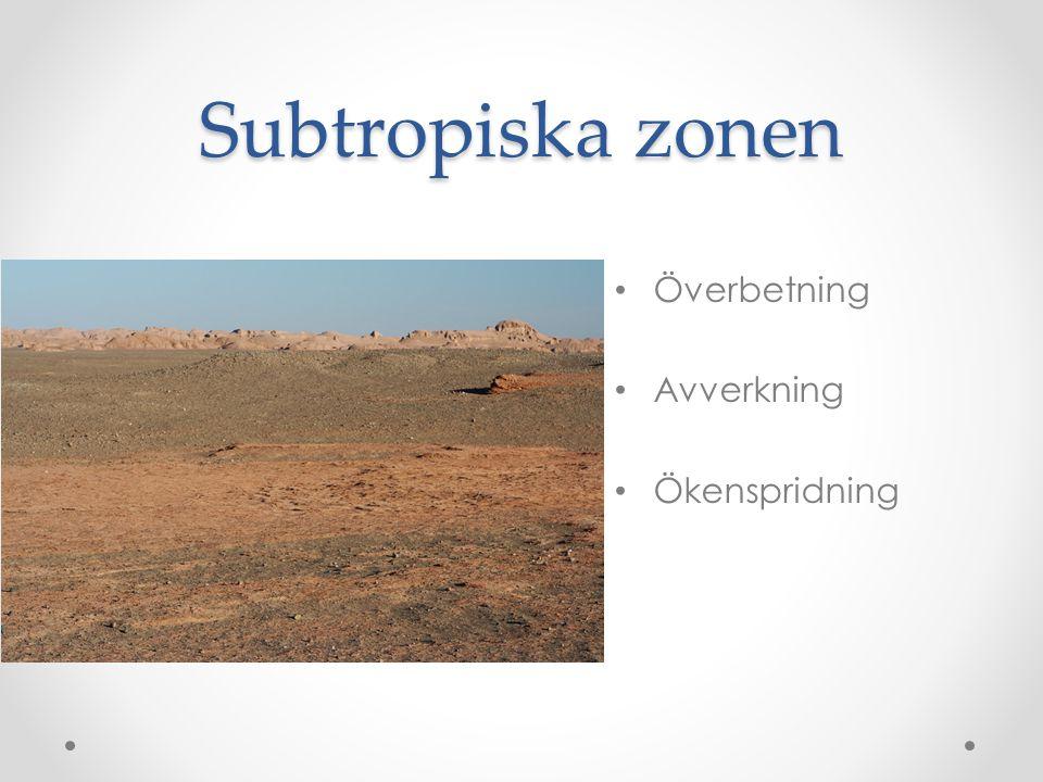 Subtropiska zonen Överbetning Avverkning Ökenspridning