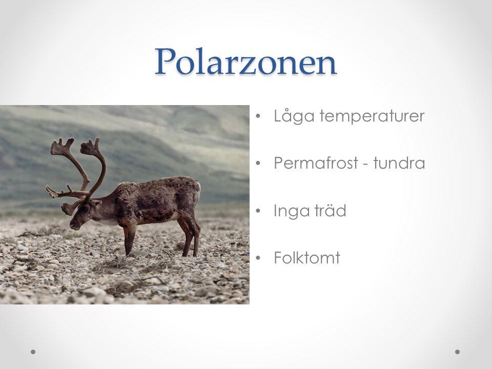 Polarzonen Låga temperaturer Permafrost - tundra Inga träd Folktomt