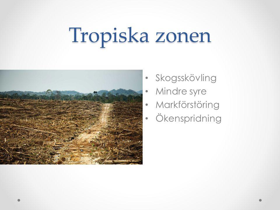 Tropiska zonen Skogsskövling Mindre syre Markförstöring Ökenspridning