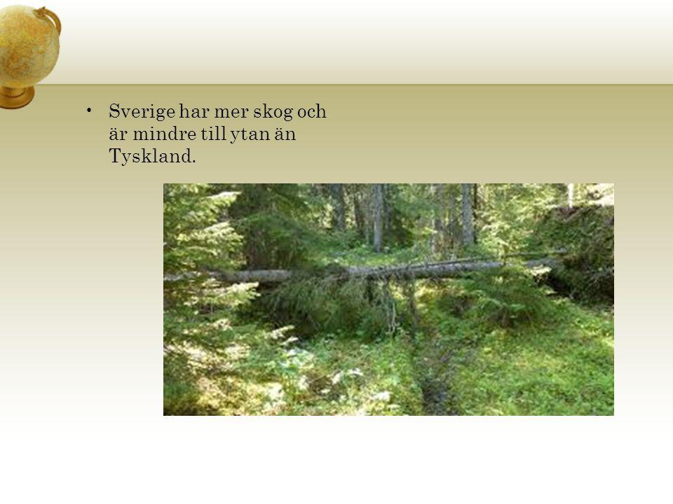 Sverige har mer skog och är mindre till ytan än Tyskland.