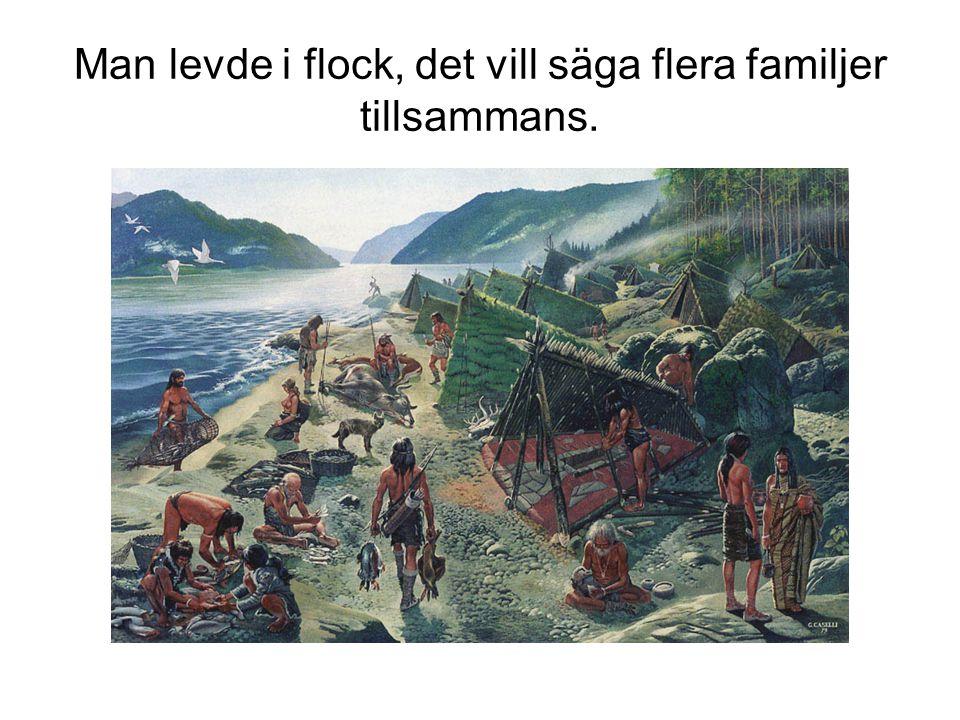 Man levde i flock, det vill säga flera familjer tillsammans.