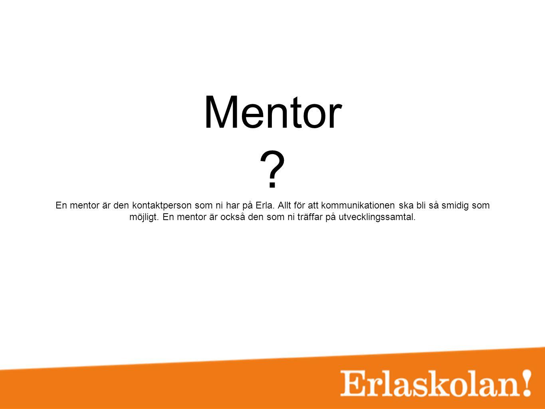 Mentor. En mentor är den kontaktperson som ni har på Erla