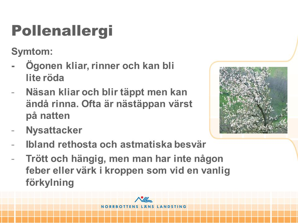 Pollenallergi Symtom: - Ögonen kliar, rinner och kan bli lite röda
