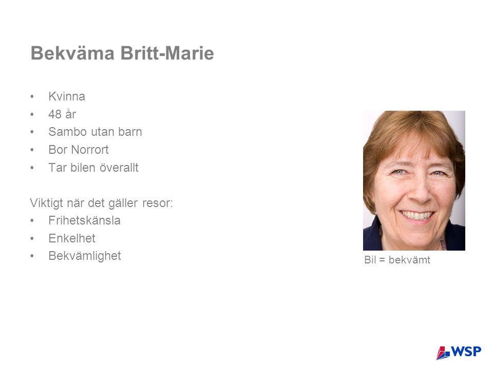 Bekväma Britt-Marie Kvinna 48 år Sambo utan barn Bor Norrort