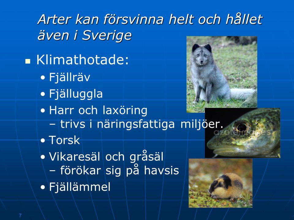 Arter kan försvinna helt och hållet även i Sverige