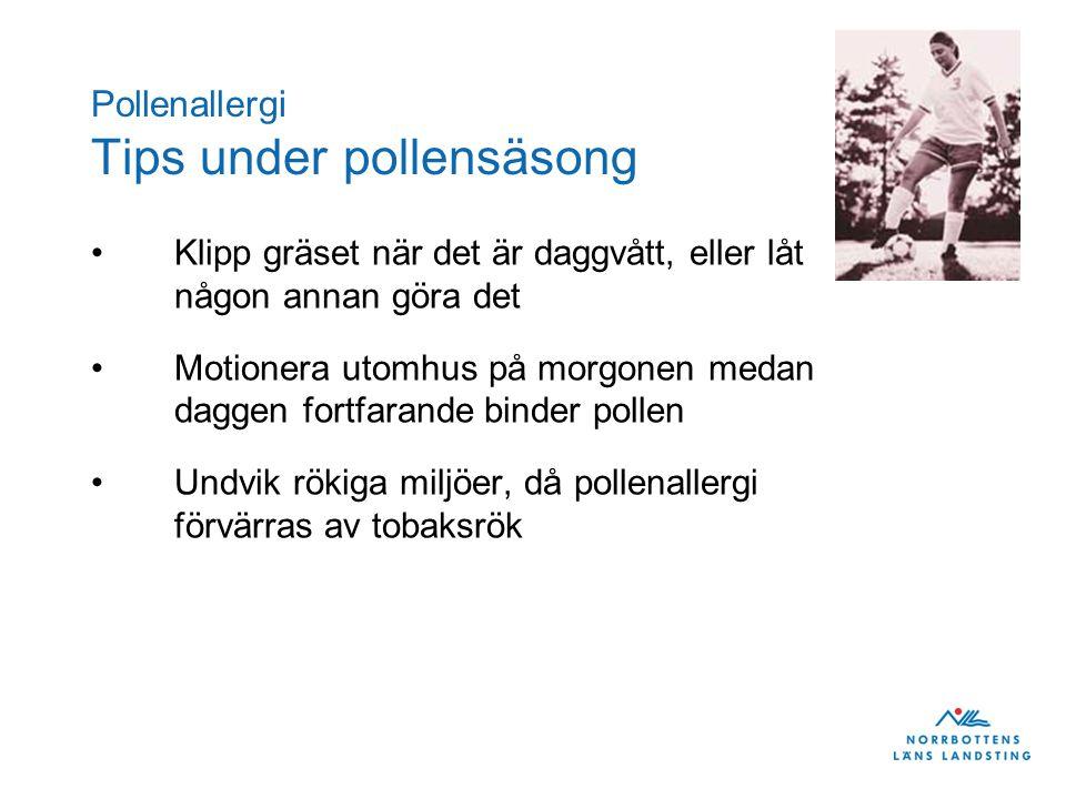 Pollenallergi Tips under pollensäsong