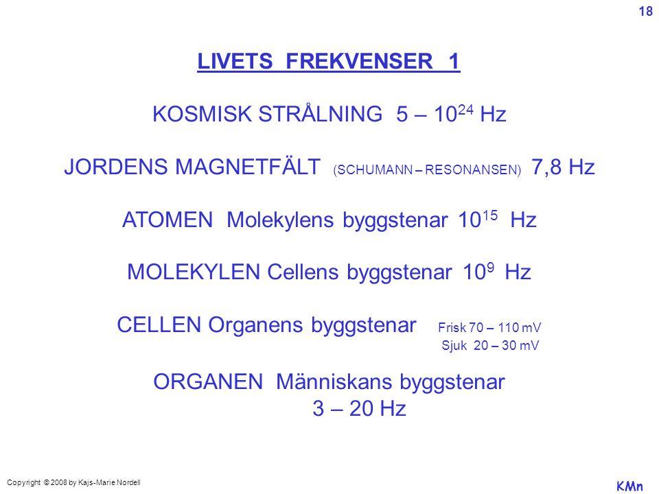 JORDENS MAGNETFÄLT (SCHUMANN – RESONANSEN) 7,8 Hz