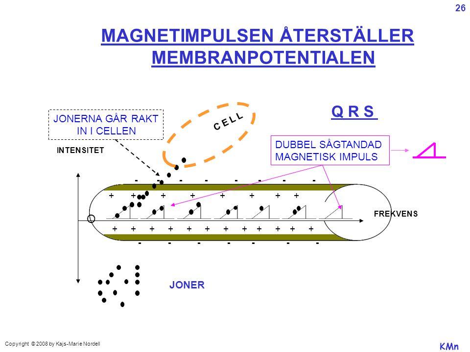 MAGNETIMPULSEN ÅTERSTÄLLER MEMBRANPOTENTIALEN