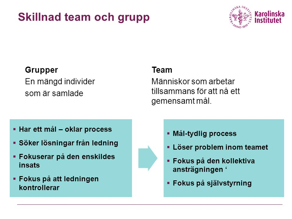 Skillnad team och grupp