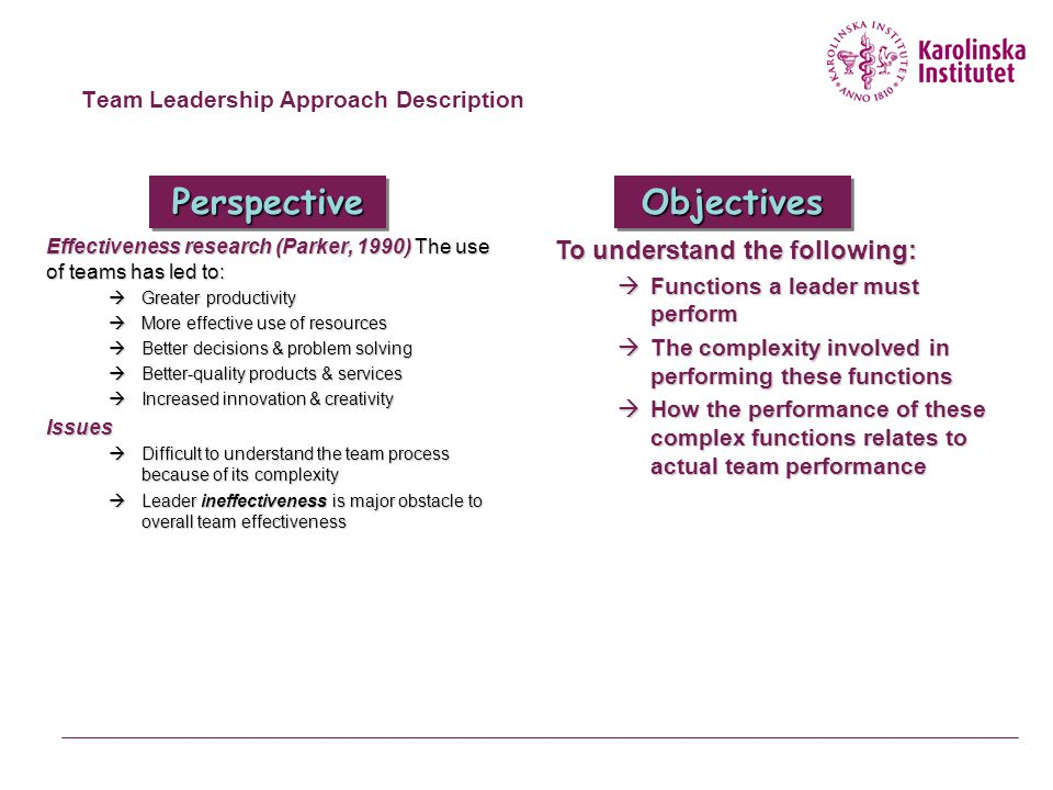 Team Leadership Approach Description