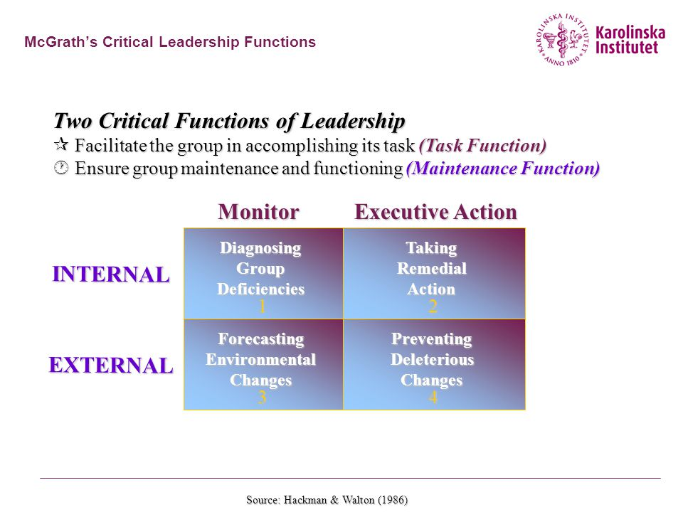 McGrath's Critical Leadership Functions