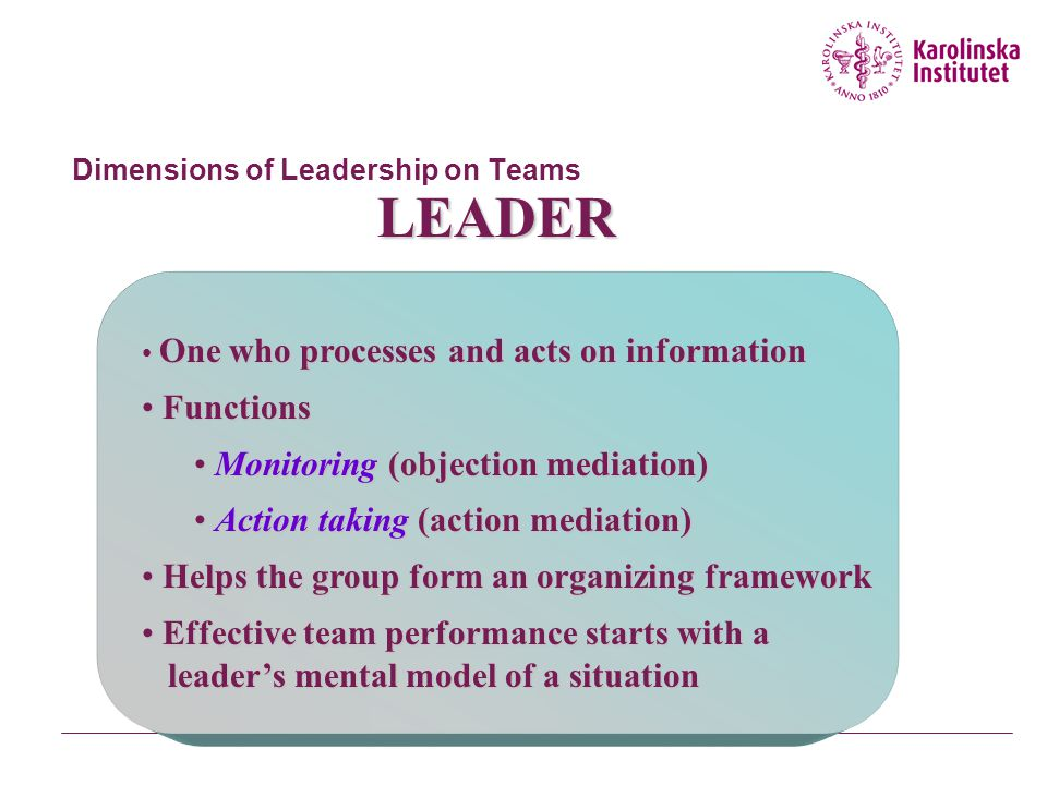 Dimensions of Leadership on Teams