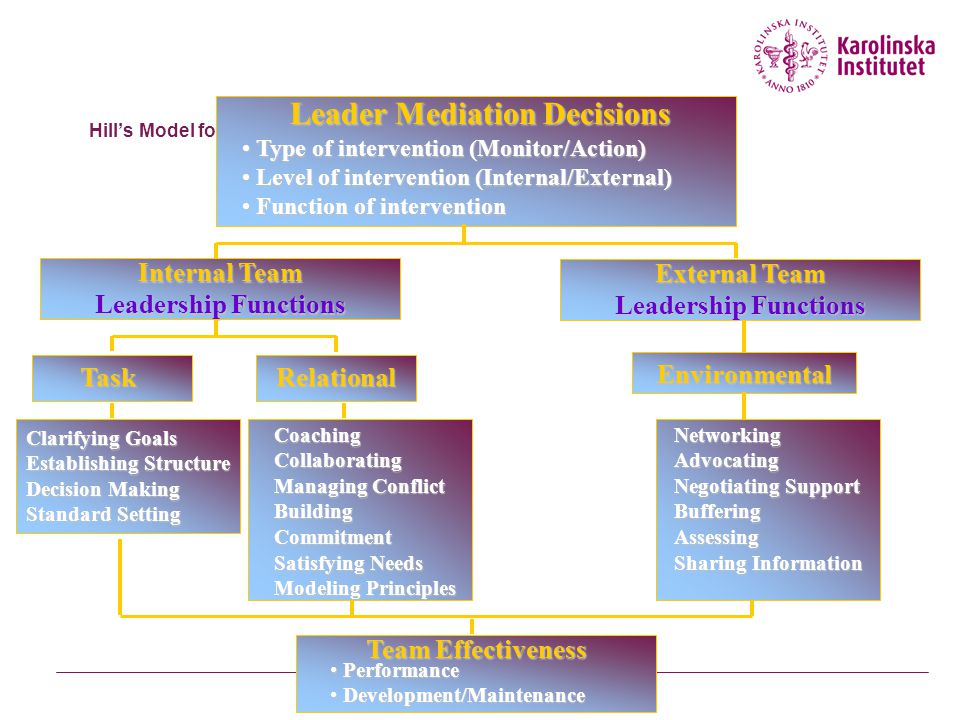 Hill's Model for Team Leadership