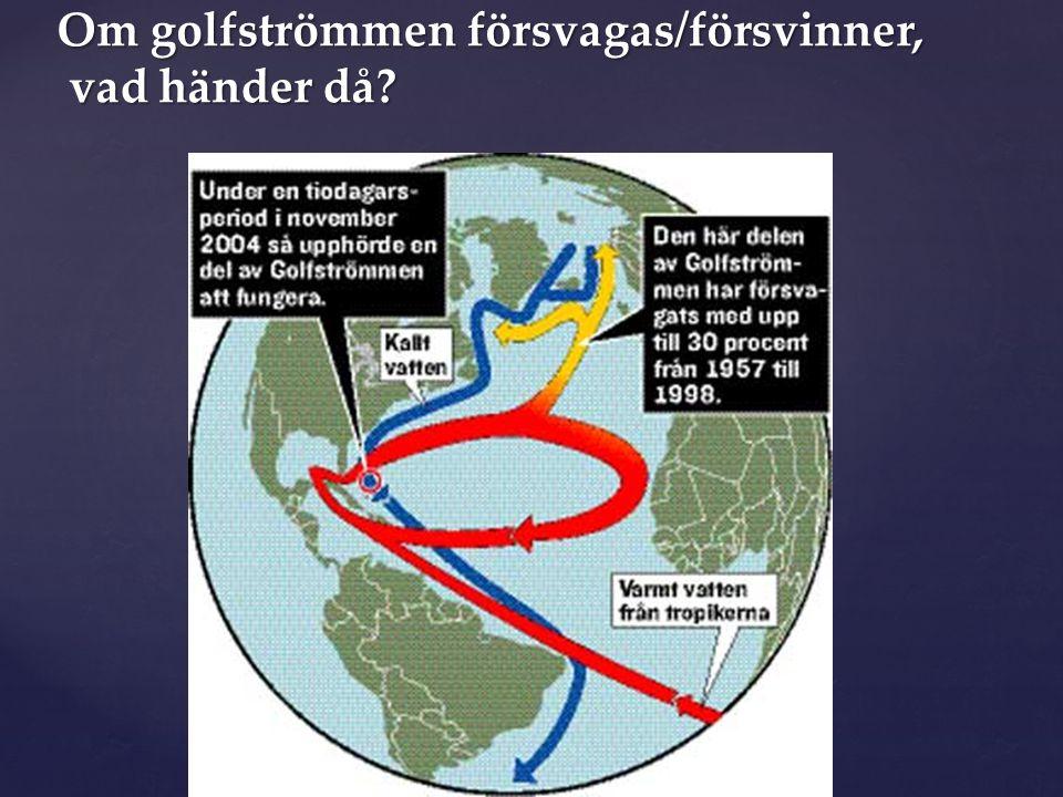 Om golfströmmen försvagas/försvinner, vad händer då