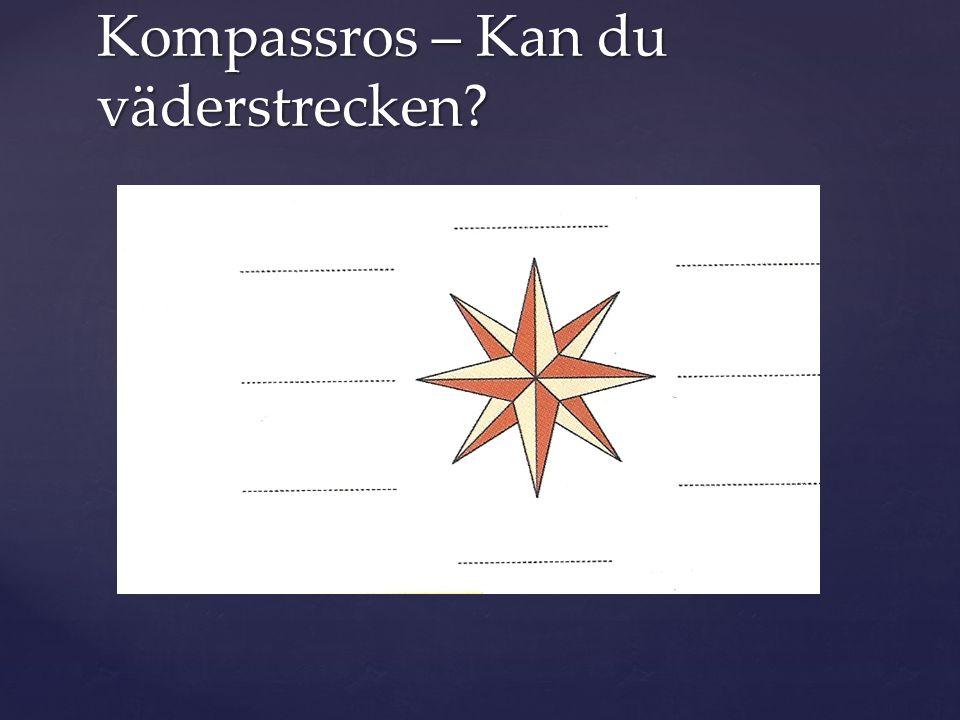 Kompassros – Kan du väderstrecken